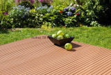 Material de Composit do Decking de WPC