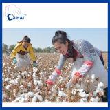 100%年のパキスタンの綿の糸の白いタオル(QHB99815)