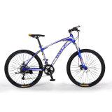 Buntes Size12 '' Fahrrad des Berg~26 '' 21speed (MTB-021)
