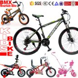 マウンテンバイクの製造業者はBMXの子供MTBのバイクのマウンテンバイクをからかう