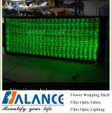 De Optische Waterval Lichte Curtan van de vezel met Zwart Frame (ofc-024)