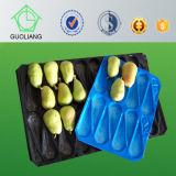 L'empaquetage biodégradable fabrique les plateaux en plastique d'étalage de nourriture