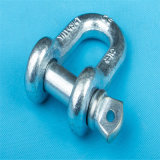 Us Type Screw Pin Drop Forged Chain Shackle
