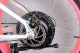 新しい脂肪質のタイヤの電気自転車