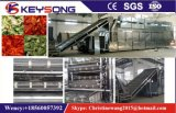 Apple Peach Apricot Fruit Vegetable Mesh Belt Conveyor Dryer
