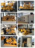 Wechselstrom-Dreiphasenausgabe-Typ 625kVA Methan-Gas-Generator