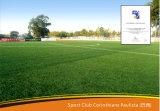 Anti-UV Hierba artificial para el campo de fútbol, hierba sintética (SE55)