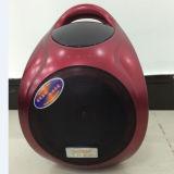 安い普及した熱い販売のLEDライトが付いている多彩な小型Bluetoothのスピーカー--F905