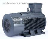 315 кВт Электродвигатель трехфазный асинхронный электродвигатель переменного тока двигателя