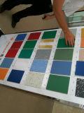 Couvre-tapis de PVC, PVC Rolls, plancher de PVC