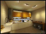 De Welbom do projeto da laca armário 2015 de cozinha americano