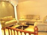 Ökonomisches antikes Chesterfield-Sofa für Wholesaling (CB313)