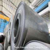 Катушка нержавеющей стали высокого качества (ранг ASTM 201)