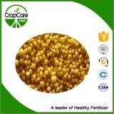Fertilizante compuesto soluble en agua NPK 16-16-16 de la alta calidad