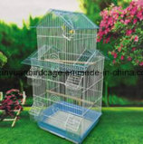 Mengeen-heißer Verkaufs-Minivogel-Rahmen