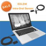 Nous détecteur dentaire approuvé par le FDA de rayon de X d'Edleni Digital