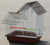 Qualitäts-und konkurrenzfähiger Preis-Haustier-RahmenBirdcage