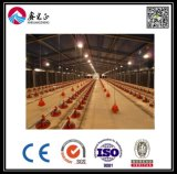 Helles Steel Chicken House mit Corrugated Steel Sheet (BYCH-004)