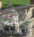 屋外鉄ケージのPowerlonの庭の装飾