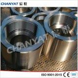 El acero inoxidable forjó el acoplador recto apropiado En/DIN (1.4301, X5CrNi1810)