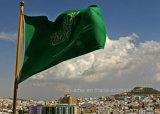 Kundenspezifisches Firmenzeichen gedruckte Arabien-Markierungsfahnen-Staatsflagge für Ereignisse