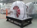 T, inducción eléctrica de alto voltaje de poca velocidad síncrona de gran tamaño Motortdmk400-32/2150-400kw trifásico de la CA del molino de bola de Tdmk