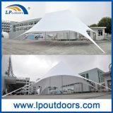 шатер звезды пляжа укрытия венчания 16X21m большой напольный для Shading