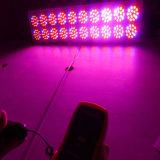 최고 실내 성장 온실 가득 차있는 스펙트럼 750W LED는 가볍게 증가한다 (아폴로 20)