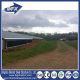 家禽のために耕作している鋼鉄構築の製造の鶏