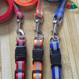 Hot-Sale Haute qualité en couleur solide 15 mm Polyester / Nylon Leash & Collier réglable avec bande réfléchissante