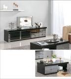 Insieme moderno della mobilia del salone della mobilia domestica