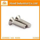 Tornillo principal de Csk del socket Hex del acero inoxidable M8 DIN7991
