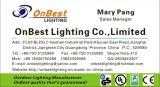 Luz caliente de la pared de la luz 9W LED del tabique hermético de las ventas en IP55 para las aplicaciones al aire libre