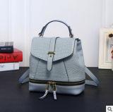 Neuer Entwurfs-Modedesigner sackt Frauen-Rucksack-koreanischen Rucksack-Beutel ein