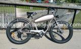 오래된 학교 작풍 250/500W 포도 수확 함 자전거 또는 고전적인 함 전기 자전거 또는 전통적인 전기 뚱뚱한 자전거 또는 향수 뚱뚱한 Pedelec 또는 Retro Pedelec 26X4 타이어 세륨