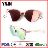 Do gato na moda novo das mulheres de Ynjn óculos de sol elegantes