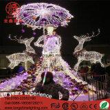 우산 3D 주제 빛 Chritmas 훈장을%s 가진 LED IP65 다채로운 아름다운 숙녀