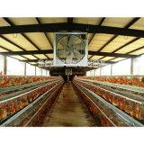 Schaufel-Durchmesser-Bauernhof-Absaugventilator der Aluminiumlegierung-43inch
