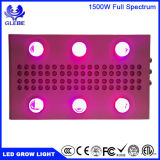 WiFi LED는 가벼운 1000W LED 플랜트를 증가한다 빛을 증가한다