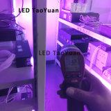 装置395nmを治す紫外線LED