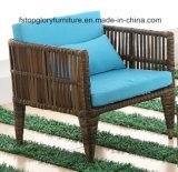 Установленная софа мебели сада ротанга напольная (TG-1299)