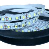 IP65 imperméabilisent la lampe de bande de 600LEDs 2835 DEL