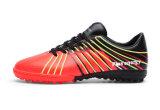 Neue glänzende Farben-Mann-flache bequeme Trekking-Schuhe (YD-8)