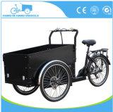 安く3つの車輪の電気三輪車の貨物バイクの価格またはCargobikeの工場または子供の貨物三輪車の自転車