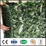 벽 장식을%s PE에 의하여 주문을 받아서 만들어지는 크기 인공적인 산울타리 검열 Rolls