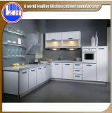 Glatte modulare Flachgehäuse-Faser-Küche-Möbel mit Countertop-Stein