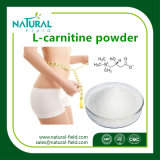 Slimming o pó da base da L-Carnitina do volume da matéria- prima do produto