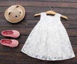 Princesa sin mangas Dress del verano de la manera de la falda de las niñas
