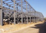 De geprefabriceerde Workshop van de Structuur van het Staal met Kraan