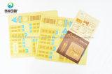 각종 다채로운 서류상 인쇄 DIY 모형 (기술)